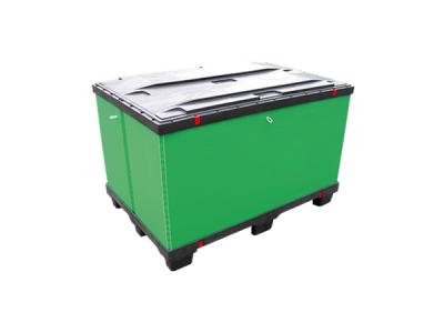 Lite Box 400×600