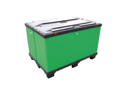 Lite Box 600×800 – BCLP600